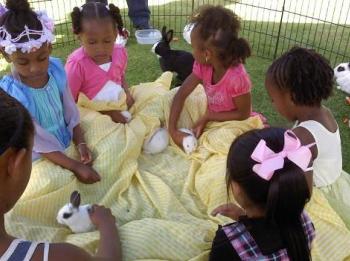 bunny-zoo-blanket-4