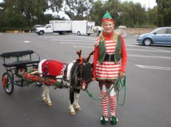reindeer-carriage-rides-elf