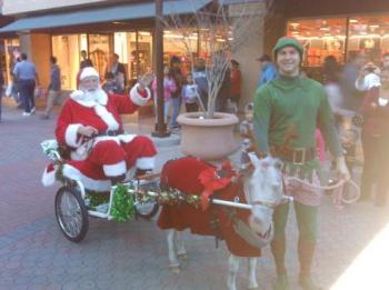 santa-reindeer-elf-2