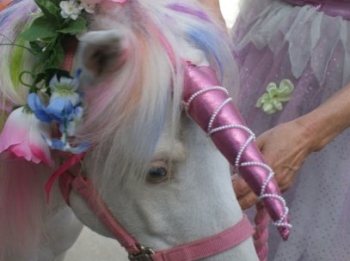 pony-dress-up-party-8